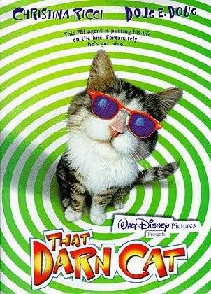 Operazione Gatto (1997)